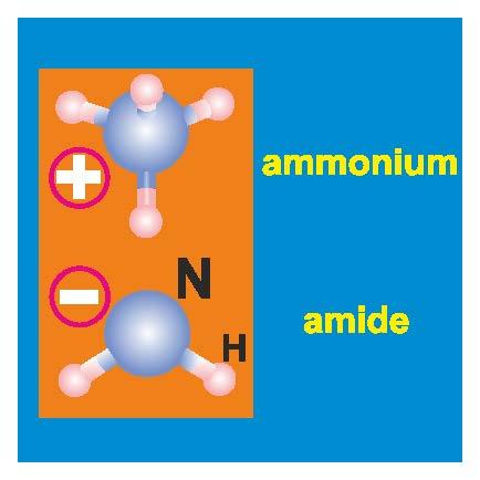 Ammonia_Thumbnail
