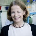 Prof. magdalena Rakowska - Boguta
