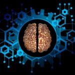 brain-5814964_1920_pixabay